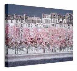 River Seine Infrared, Paris - Obraz na płótnie