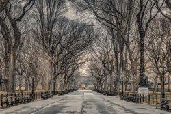New York Central Park - plakat