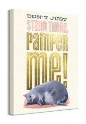 The Secret Life Of Pets (Pamper Me) - Obraz na płótnie