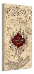 Harry Potter (The Marauders Map) - Obraz na płótnie