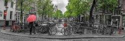 Amsterdam Czerwone Tulipany i Rowery - plakat