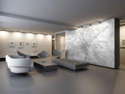 Fototapeta na ścianę - Paryż - Mapa w odcieniach szarości