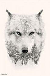 Biały Wilk - plakat