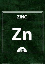 Zinc ZN 30 - plakat  A4