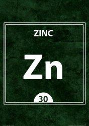 Zinc ZN 30 - plakat A3