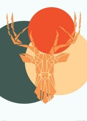 Deer colour - plakat B2