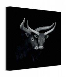Watusis - obraz na płótnie