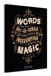 Harry Potter Words - obraz na płótnie