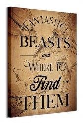 Obraz Ścienny - Fantastyczne bestie Fantastic Beasts (Beast Drawings)