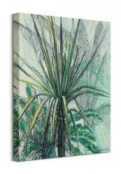 Obraz ścienny - Yucca - Jukka - 40x50 cm