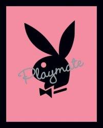 Playmate (Pink) - plakat