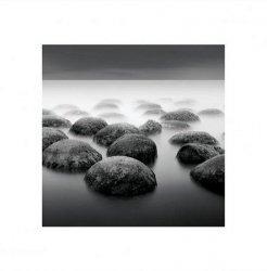 Poranna mgła - reprodukcja