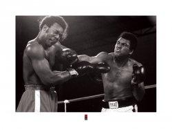 Muhammad Ali (Punch) - reprodukcja