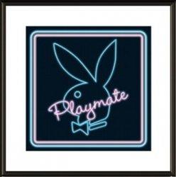 Playmate Neon - obraz w ramie