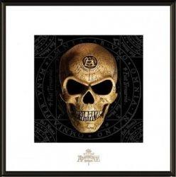 Alchemy Omega Skull - obraz w ramie