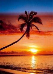 Palma (Zachód słońca) - plakat