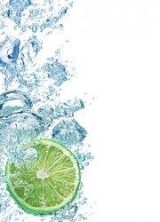 Fototapeta do kuchni - Limonka w wodzie - 183x254 cm