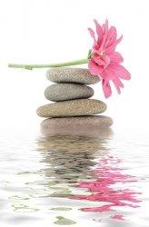 Fototapeta na ścianę - Kwiat i kamienie, spa - 115x175 cm
