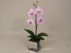 Sztuczny storczyk - Orchidea - W doniczce - 25x55cm