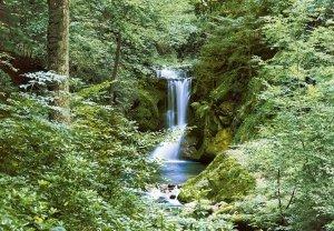 Fototapeta na ścianę - Wiosenny wodospad - 366x254 cm