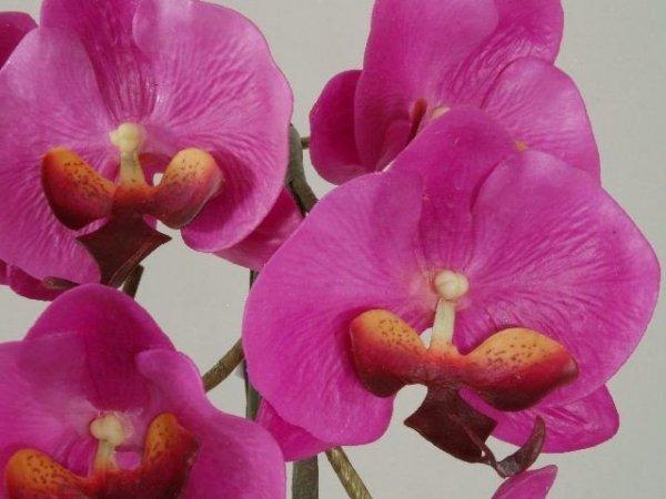Sztuczny storczyk - Orchidea - W doniczce - 37x65cm