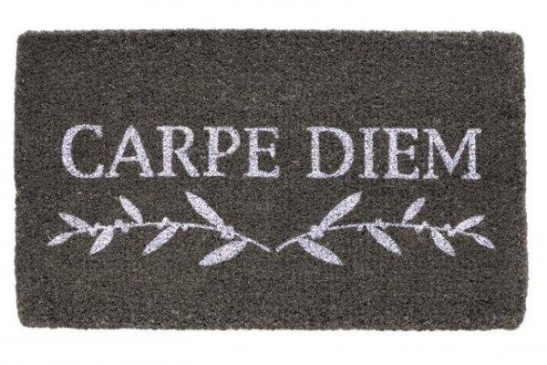 Wycieraczka wejściowa - Carpe Diem - 44 x 74 x 2 cm