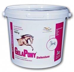 ORLING SeleniumPony -  Dla poprawy krążenia krwi w tkankach